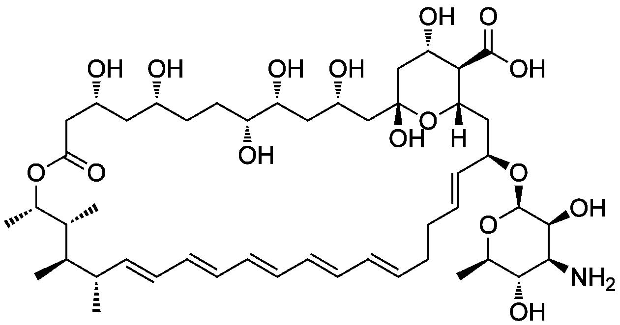 amphotericin structure