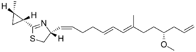 isolation and purification of lyngbya majuscula