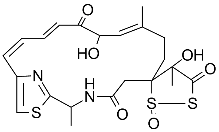 leinamycin structure