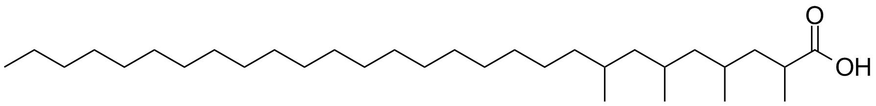 mycocerosic acid synthase structure